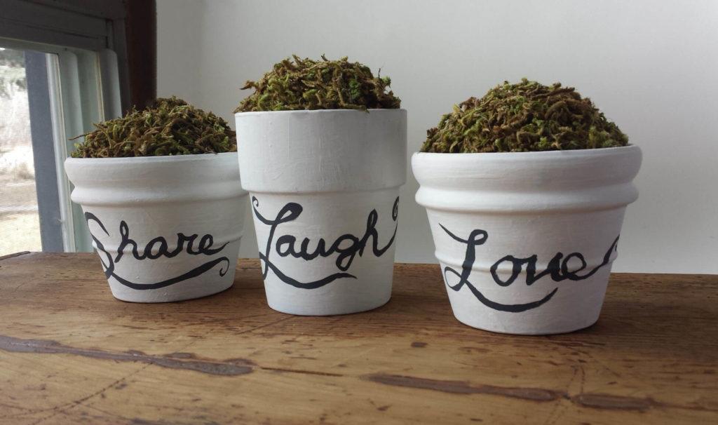 craft moss,clay pot diy,home decor