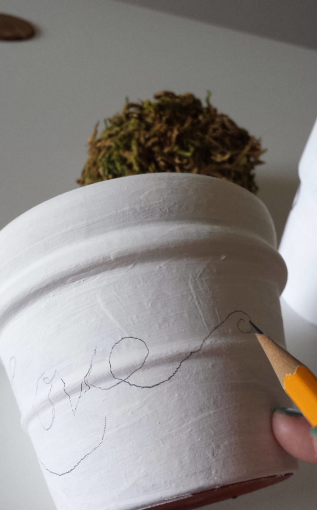 hand lettering,clay pot,craft moss,diy