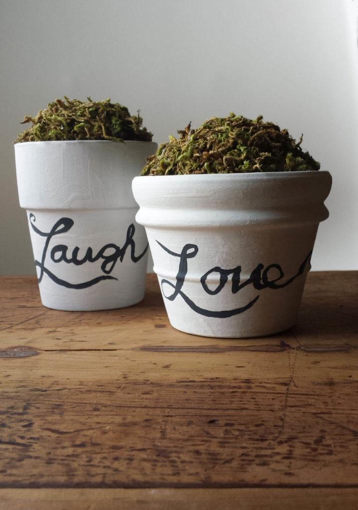 painted pots,craft moss,clay pots,diy