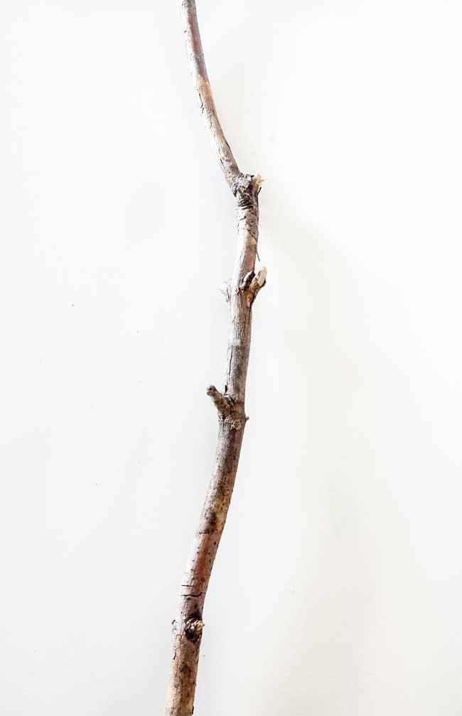 twig for felt leaves wall decor